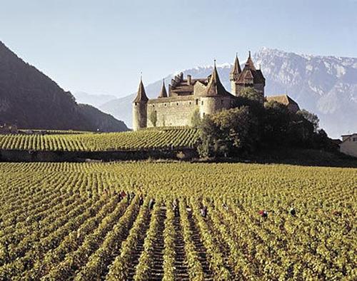 Castillo d'Aigle
