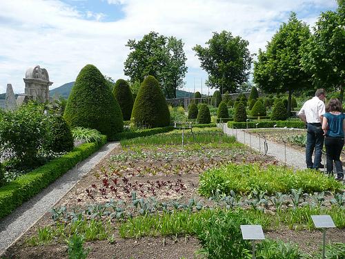 jardines castillo wildegg