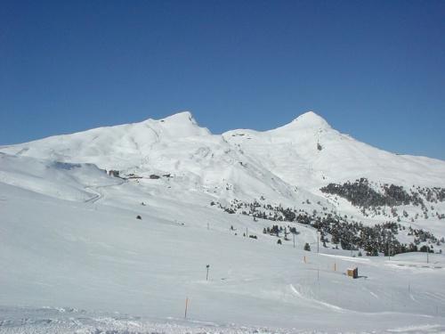 Caminatas invernales en Kleine Scheidegg