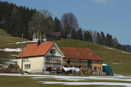 Caminata Nordica en Appenzell