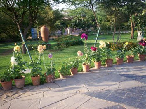 jardin 5 sentidos 1
