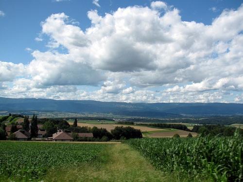 Campos naturales en Mittelland