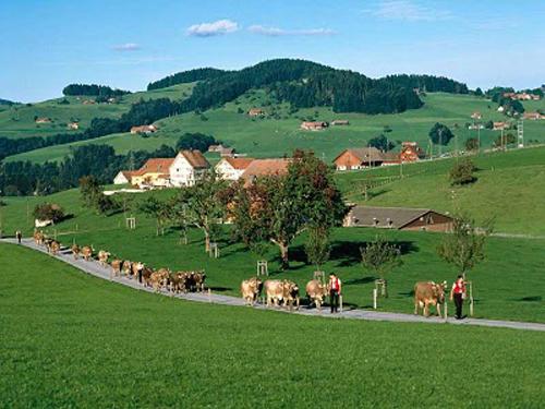 Conoce el noreste de Suiza