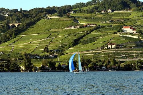 Qué comer en un viaje por el Lago de Ginebra