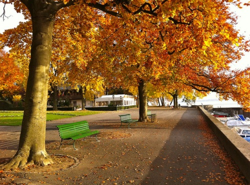 Parque Barton